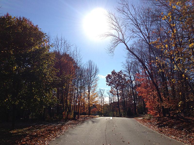 Crisp Autumn day, long walk