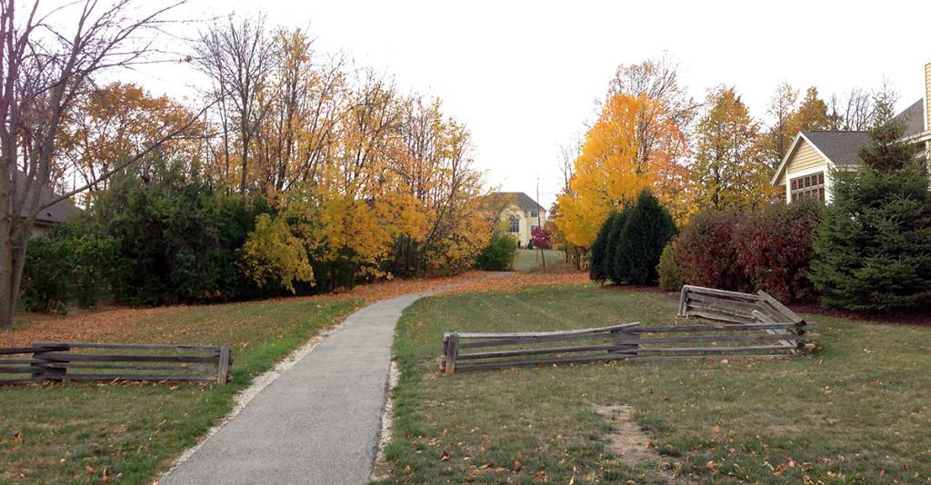 path-taken.302172106_large