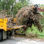 Spring Brush Pick-up Starts May 8