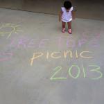 Tree Tops Picnic 2013
